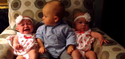 Toddler Meeting Twins for the First Time