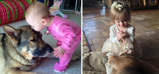 21-cutest-buddies-that-will-make-you-smile